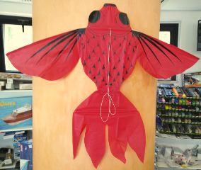 FLYING FISCH 48x58cm STAT+CAVI