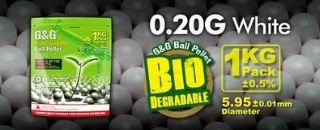 PALLINI G&G BIO           0,20