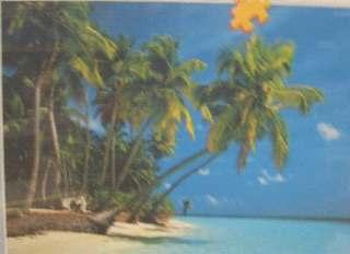 SPIAGGIA DELLE MALDIVE   500pz