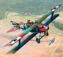 BIPLANO ROLAND C.II WWI   1/48